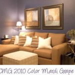 Colors for Home Decorating:  Mardi Grape
