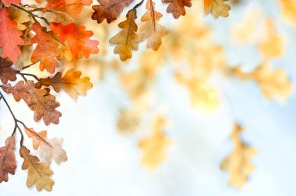 есенни листа