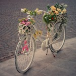 cute summer bicycle by Nan Lawson for Grow your Beauty