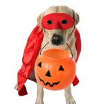 Happy Halloween from OFS