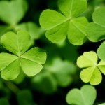 Home Decor and Fabric Ideas for St. Patrick's Day