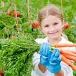 Using Burlap in the Garden