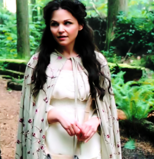 Photo From Once Upon a Fashion http://ouatfashion.tumblr.com/post/31780186931/as-requested-by-beautepartout-heres-a-closer