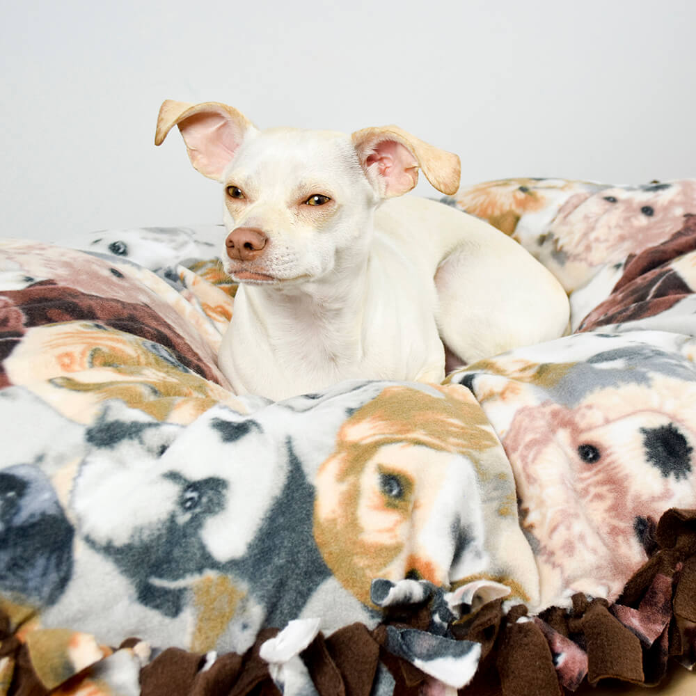 How to Make a No Sew Fleece Dog Bed - Finished