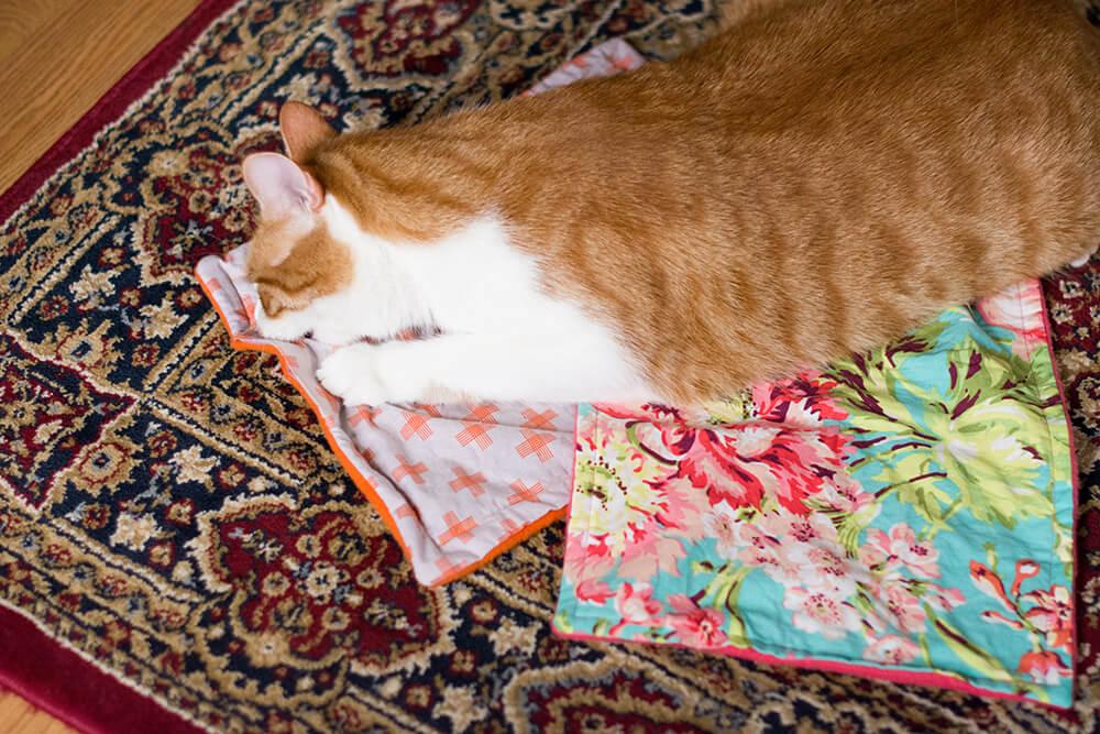 catnip-blanket-finished-1-2