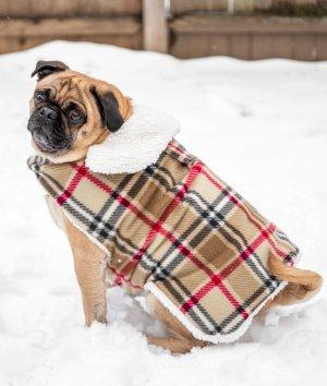 How to Make a Waterproof Dog Coat